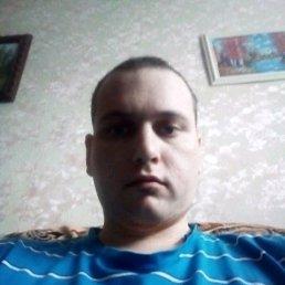 Владимир, 29 лет, Тюменцево