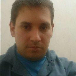Vladimir, 33 года, Саратов