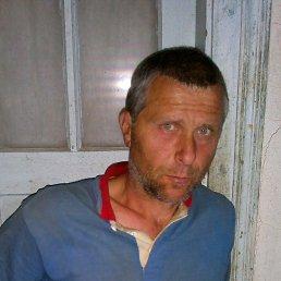 Володя, 45 лет, Корец
