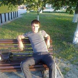 николай, 34 года, Крымск