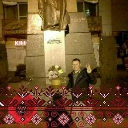 Андрей, 42 года, Дрогобыч