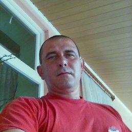 Árpád, 48 лет, Виноградов