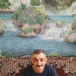 Николай, 42 года, Тульчин
