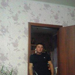 Николай, 39 лет, Пласт