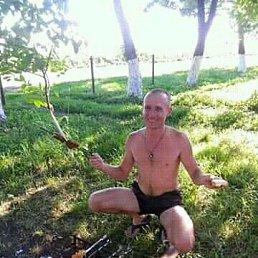 Женя, 35 лет, Бобровица