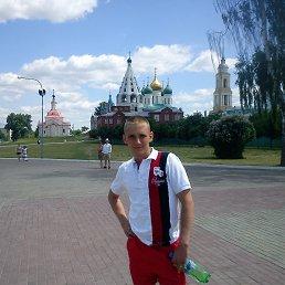Андрей, 30 лет, Курск