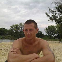 Серёга, 36 лет, Дзержинск