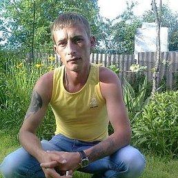 Владимир, 33 года, Сочи