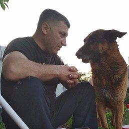 Петр, 50 лет, Полтава