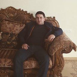 Гарик, 27 лет, Беляевка