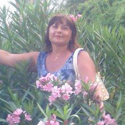 Наталія, 54 года, Ромны