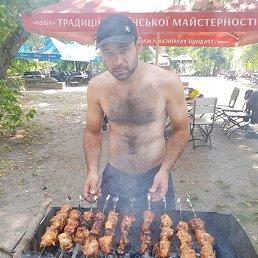Артем, 35 лет, Запорожье