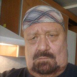 Владимир, 66 лет, Изюм