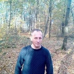 Роман, 40 лет, Львов