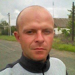 Николай, 27 лет, Марганец
