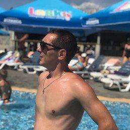 Дмитрий, 31 год, Малин