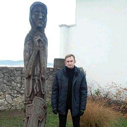 Юрий, 42 года, Белая Церковь