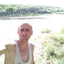 Александр, 29 лет, Нежин