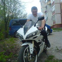 Вадим, 34 года, Фастов