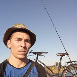 Сергей, 34 года, Павлоград