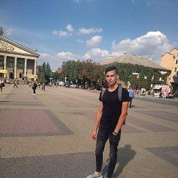 Олeксандр, 19 лет, Виноградов