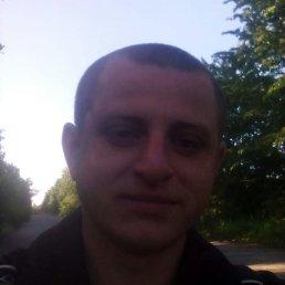 Руслан, 29 лет, Чемеровцы