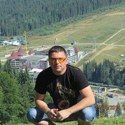Сергей, 35 лет, Львов