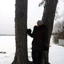 Галина Николаевна, 61 год, Гдов