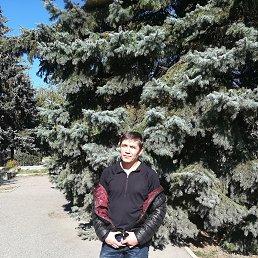 Денис, 36 лет, Пятигорский