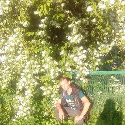 Вадим, 47 лет, Краснозаводск