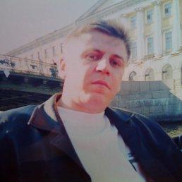 Владислав, 47 лет, Рошаль