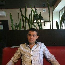 Дима, 31 год, Моргауши