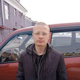 никита, 37 лет, Кемерово