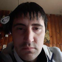 Антон, 28 лет, Торопец