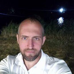 Егор, 35 лет, Тула