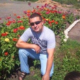 Михаил, 35 лет, Кромы