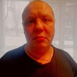 Николай, 41 год, Зубцов