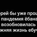 Фото Вася, Ростов-на-Дону, 22 года - добавлено 7 апреля 2020