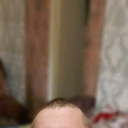 Вова, 25 лет, Кромы