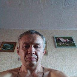 Алексей, 41 год, Февральск