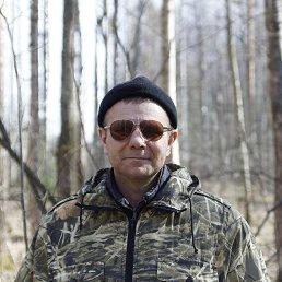 Александр, 41 год, Кировск