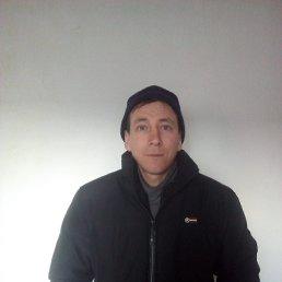 Геннадий, 35 лет, Вурнары