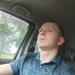 Николай, 29 лет, Новоалтайск