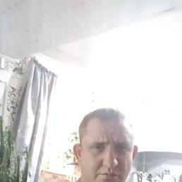 Денис, 33 года, Курск