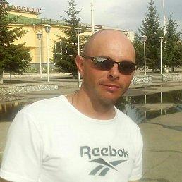 Андрей, 41 год, Шимановск