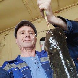 Дмитрий, 48 лет, Февральск