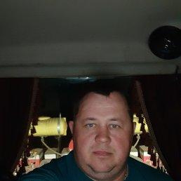 Николай, 34 года, Тербуны