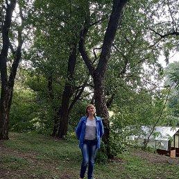 Татьяна, 44 года, Белгород