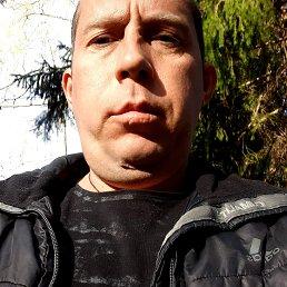 Сергей, 35 лет, Кировск