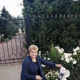 Елена, 55 лет, Покров